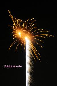 浪漫花火 2009 in 芳賀